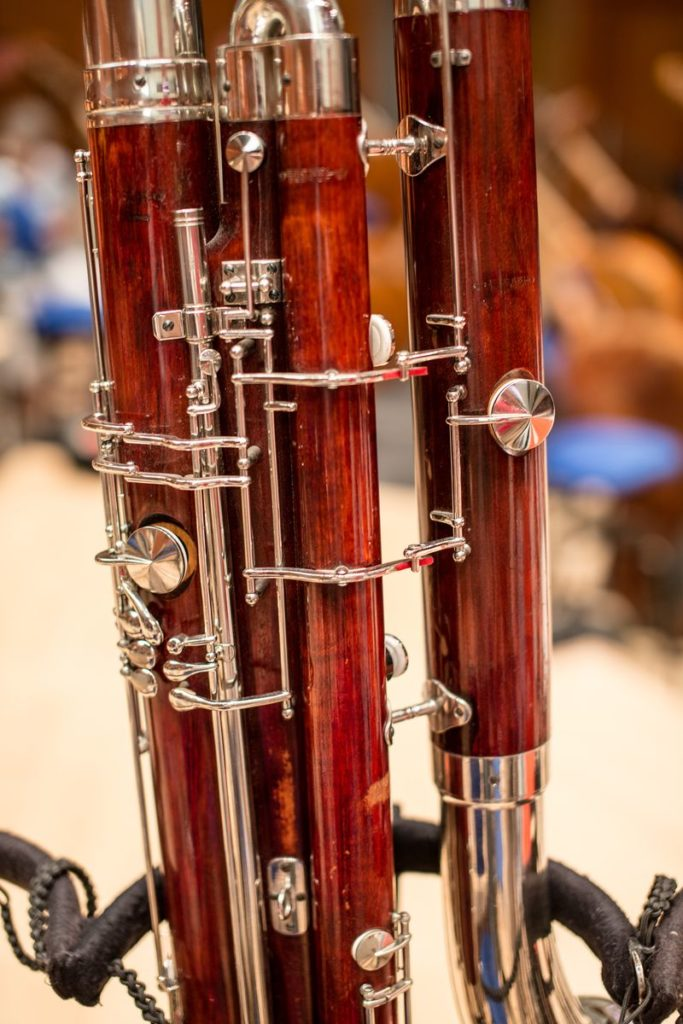Bassoon Reeds - Online Store for musicians